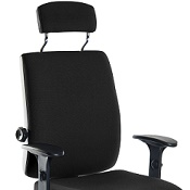 Ergonomic Chair T24PP With Arms And Headrest